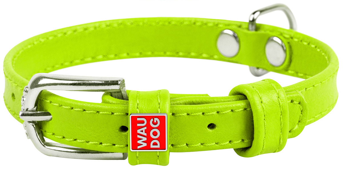 Ошейник кожаный для собак без украшений зеленый 12 мм 21 – 29 см Collar WauDog Glamour (1 шт)