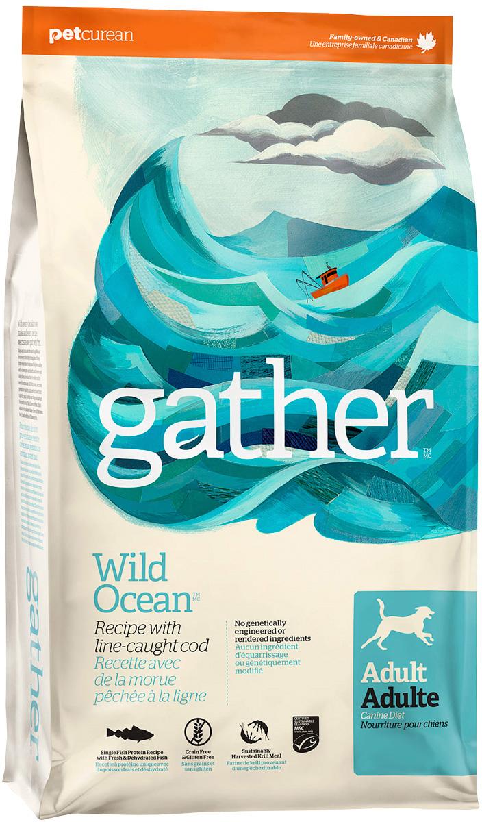 Gather Dog Wild Ocean Fish монобелковый для взрослых собак всех пород с океанической рыбой (2,72 кг)