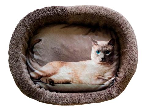 Лежак для кошек PerseiLine Дизайн № 3 принт 1 овальный 49 х 33 х 16 см (1 шт) дом для животных perseiline дизайн бамбук 33 х 33 х 40 см 1 шт