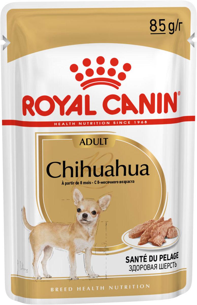 Royal Canin Chihuahua Adult для взрослых собак чихуахуа паштет 85 гр (85 гр) royal canin сухой корм royal canin chihuahua adult для взрослых собак породы чихуахуа