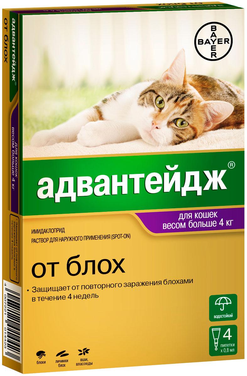 Advantage 80k – Адвантейдж капли для кошек весом более 4 кг против блох, вшей и власоедов (1 пипетка по 0,8 мл) Bayer (1 уп)