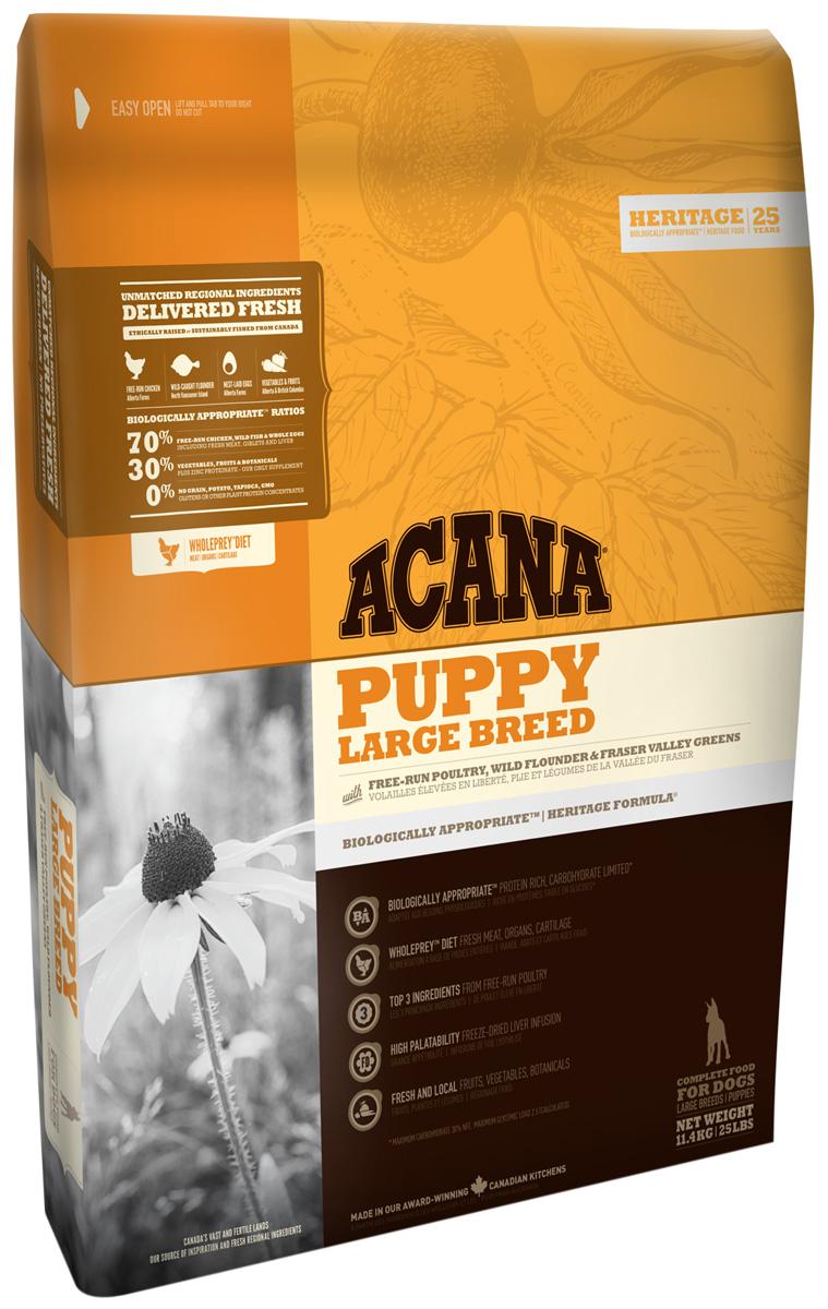 Acana Puppy Large Breed для щенков крупных пород (17 кг)
