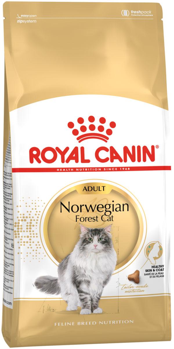 Royal Canin Norwegian Forest Cat Adult для взрослых норвежских лесных кошек (0,4 кг)