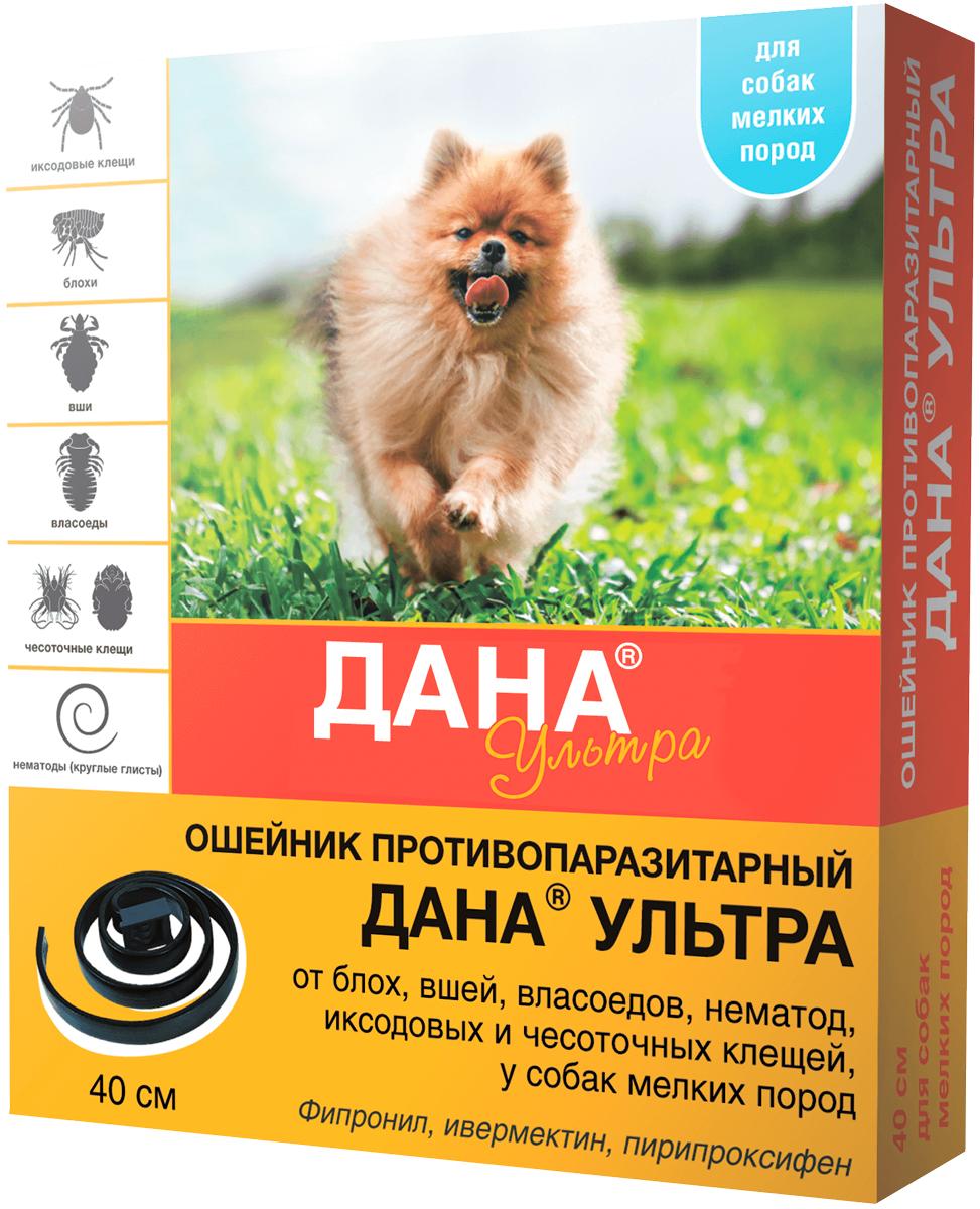 Дана ультра – ошейник для щенков и собак маленьких пород против клещей, блох, вшей и власоедов 40 см Apicenna (1 шт) фото