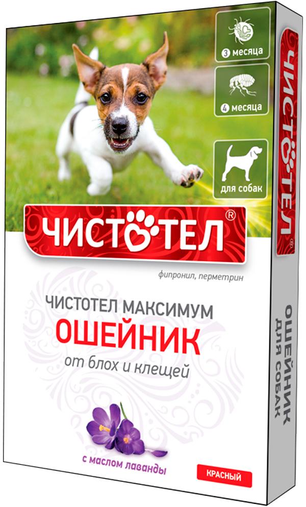 Чистотел максимум ошейник для собак против блох и клещей красный 65 см (1 шт) фото