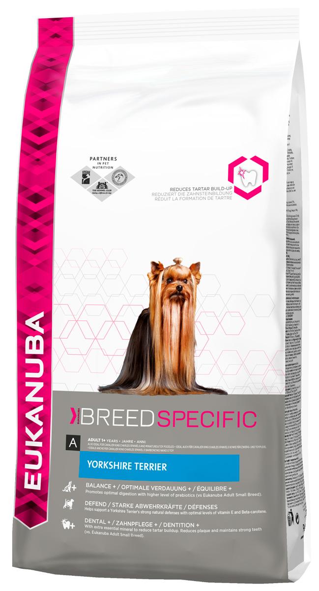 Eukanuba Yorkshire Terrier для взрослых собак йоркширский терьер (2 кг) фото