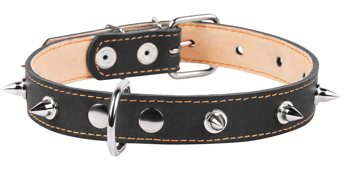 Ошейник кожаный для собак двойной с шипами черный 25 мм 38 – 50 см Collar (1 шт)