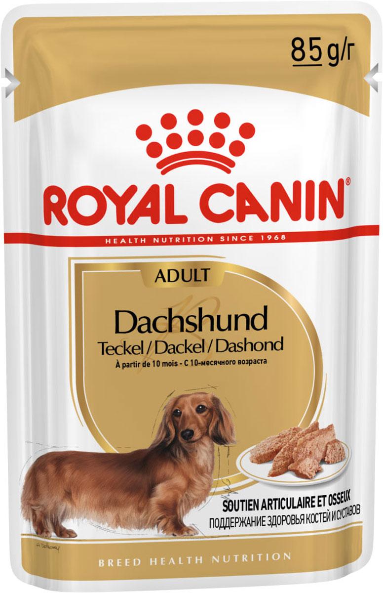Royal Canin Dachshund Adult для взрослых собак такса паштет 85 гр (10 + 2 шт)