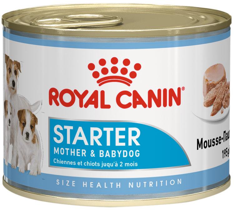 Royal Canin Starter Mousse для щенков до 2 месяцев, беременных и кормящих сук 195 гр (195 гр)