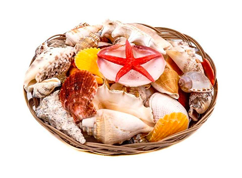 Декор набор морских раковин в корзине 18 см (1 шт).