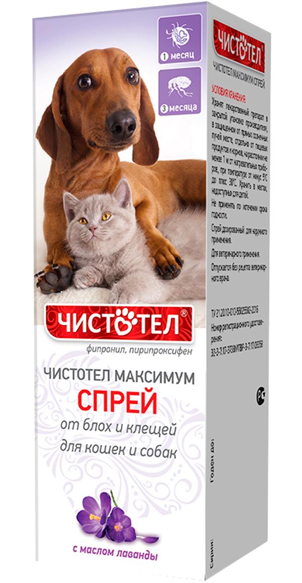 чистотел максимум спрей для собак и кошек против клещей и блох 100 мл (1 шт)
