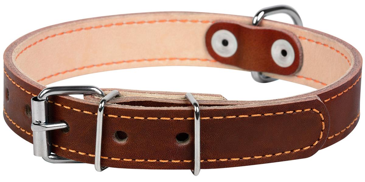 Ошейник кожаный для собак двойной коричневый 20 мм 32 - 40 см Collar (1 шт)