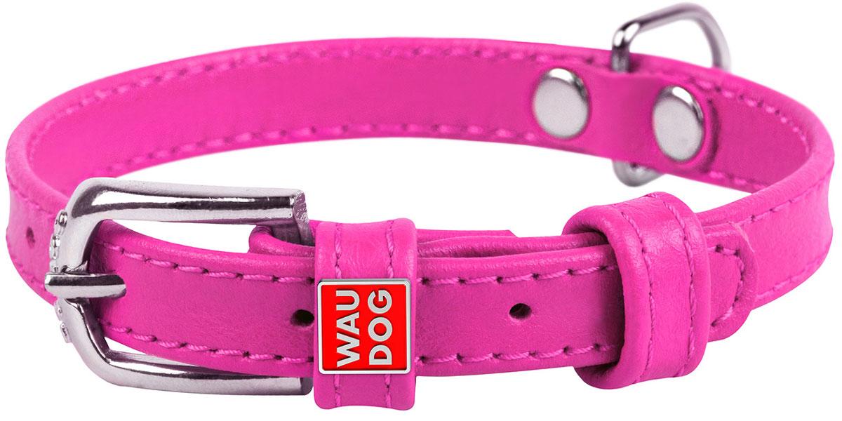 Ошейник кожаный для собак без украшений розовый 12 мм 21 – 29 см Collar WauDog Glamour (1 шт) фото