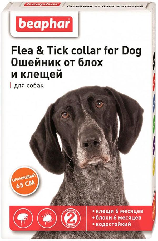 Beaphar – Беафар ошейник для собак против блох и клещей, оранжевый (65 см) (1 шт) фото