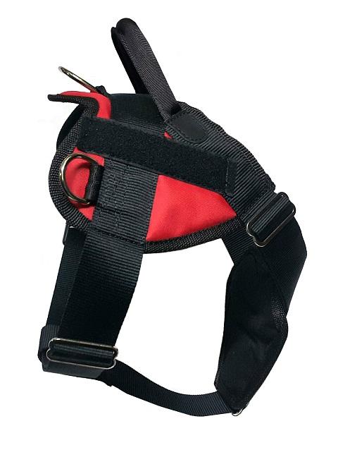 Шлейка с нашивками для собак № 1 стропа 50 мм с пластиковой пряжкой ZooMaster (1 шт) шлейка с нашивками для собак 2 стропа 50 мм с металлической пряжкой zoomaster 1 шт
