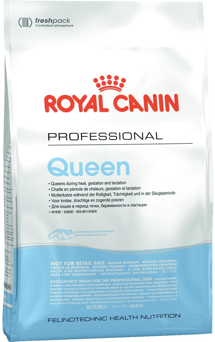 Royal Canin Queen 34 для взрослых кошек при беременности (10 кг) фото