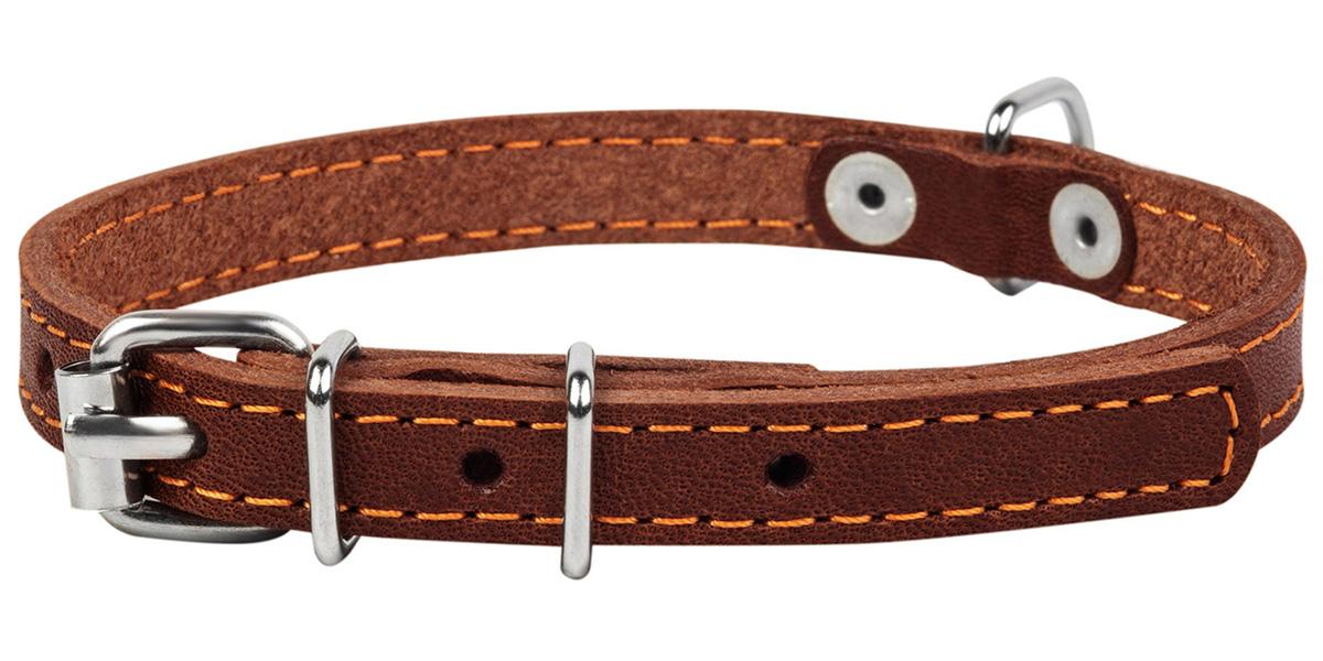 Ошейник кожаный для собак одинарный коричневый 20 мм 32 - 40 см Collar (1 шт)