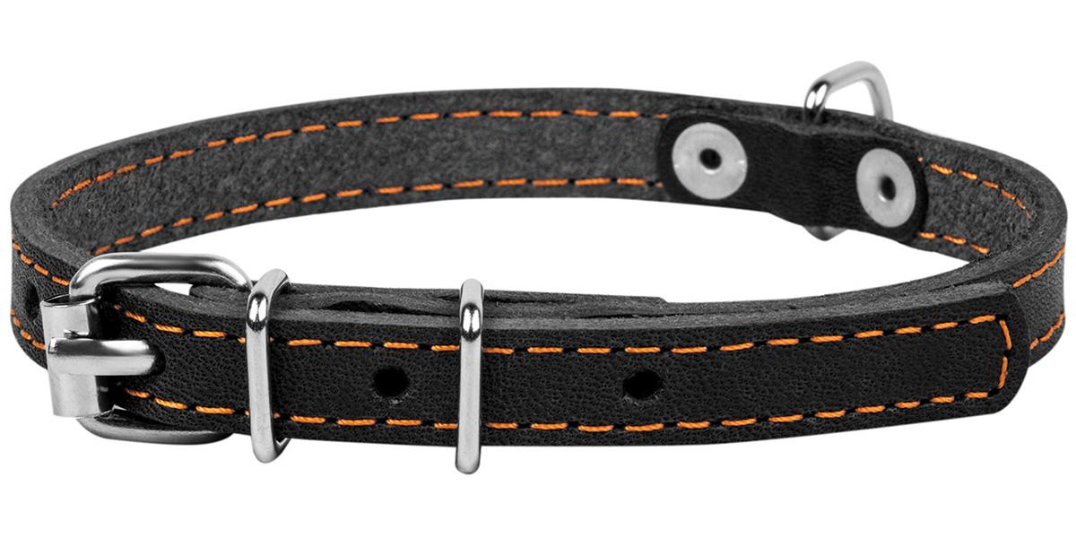 Ошейник кожаный для собак одинарный черный 20 мм 32 - 40 см Collar (1 шт)