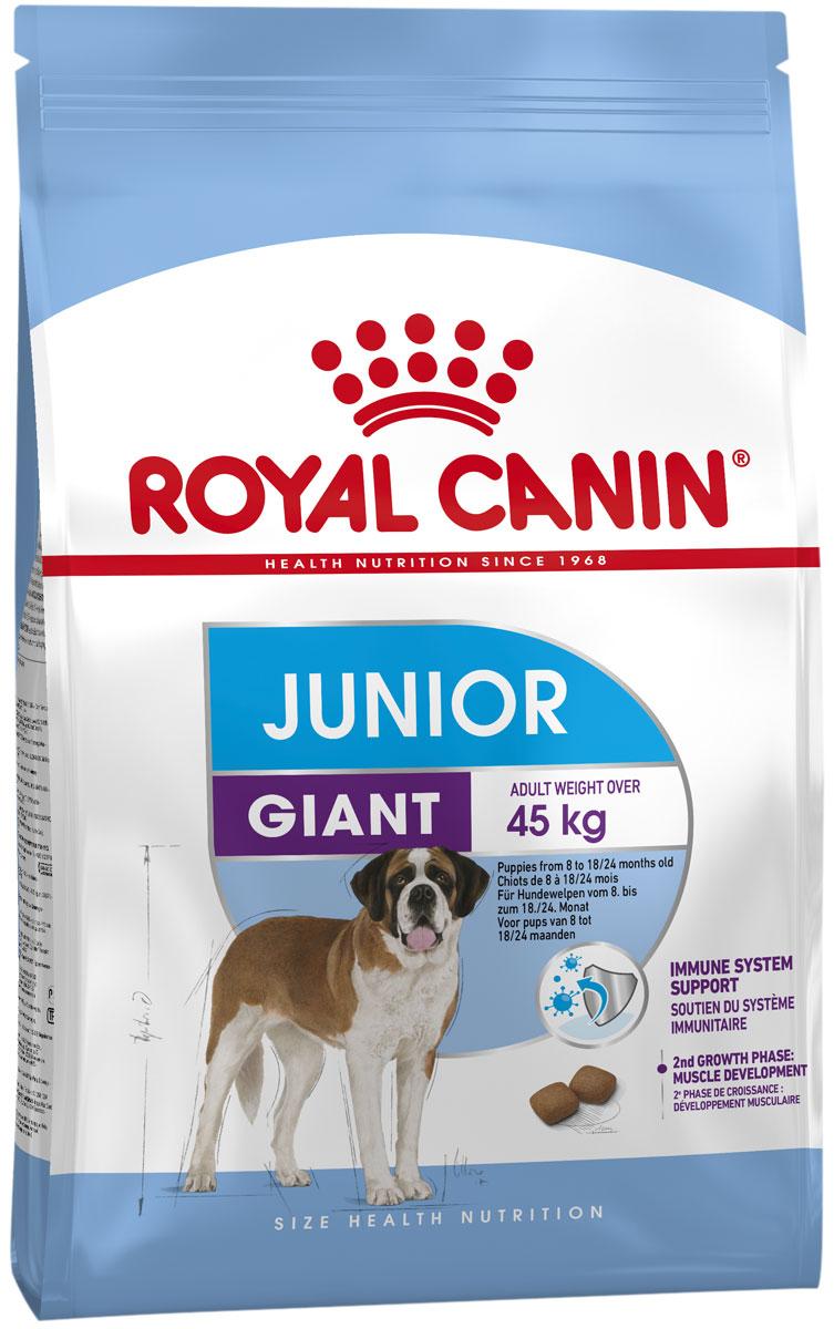 Фото - Royal Canin Giant Junior для щенков крупных пород (3,5 + 3,5 кг) royal canin giant puppy для щенков крупных пород 3 5 3 5 кг