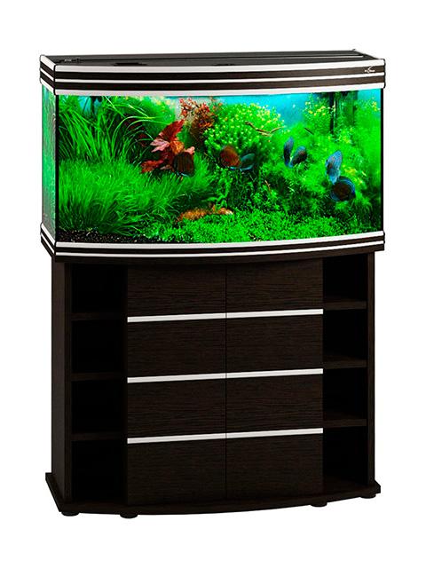 Фото - Аквариум и тумба Биодизайн Altum Panoramic 200 венге (Тумба) аквариум и тумба биодизайн altum 135 венге аквариум