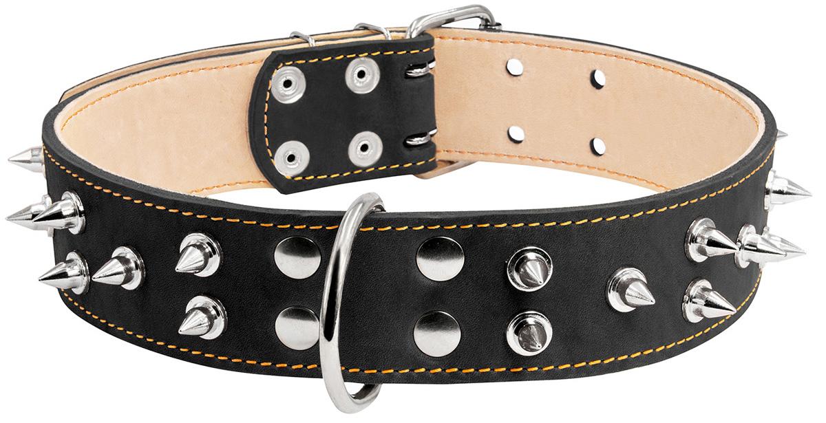 Ошейник кожаный для собак двойной с шипами черный 45 мм 56 – 68 см Collar (1 шт)