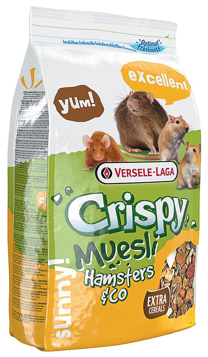 Фото - Versele-laga Crispy Muesli Hamster & Co корм для хомяков с витамином е (400 гр) мюсли axa muesli crispy хрустящие медовые хлопья и шарики с тропическими фруктами коробка 270 г