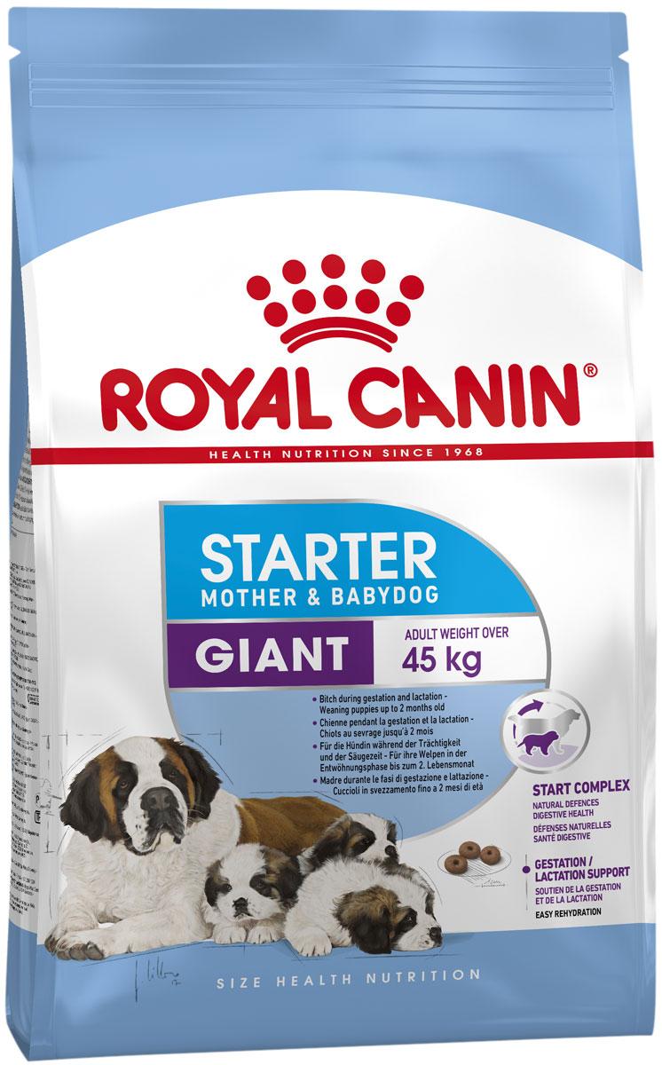 Royal Canin Giant Starter для щенков крупных пород до 2 месяцев, беременных и кормящих сук (4 + 4 кг)
