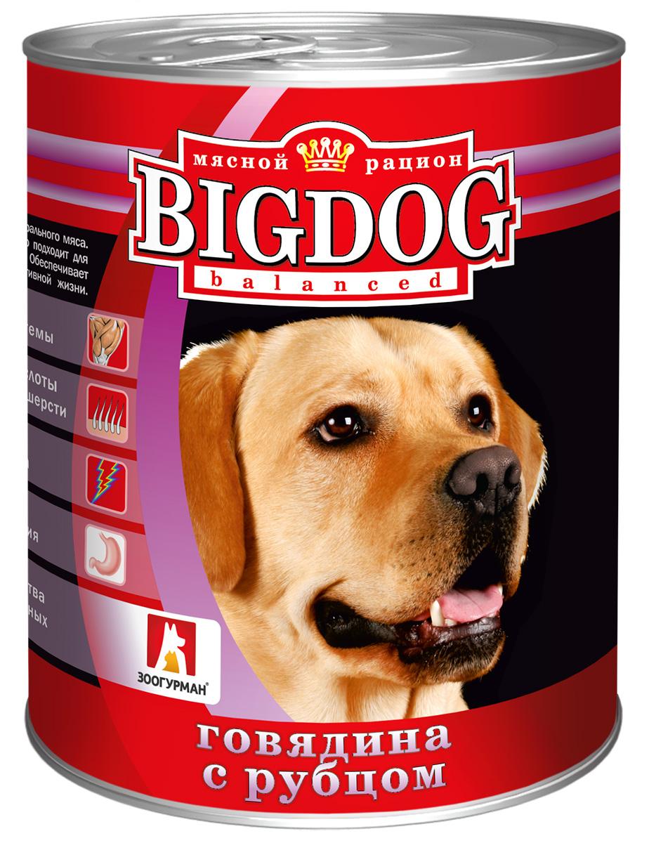 Фото - зоогурман Big Dog для взрослых собак с говядиной и рубцом (850 гр) organix для взрослых собак с говядиной и рубцом 750 гр