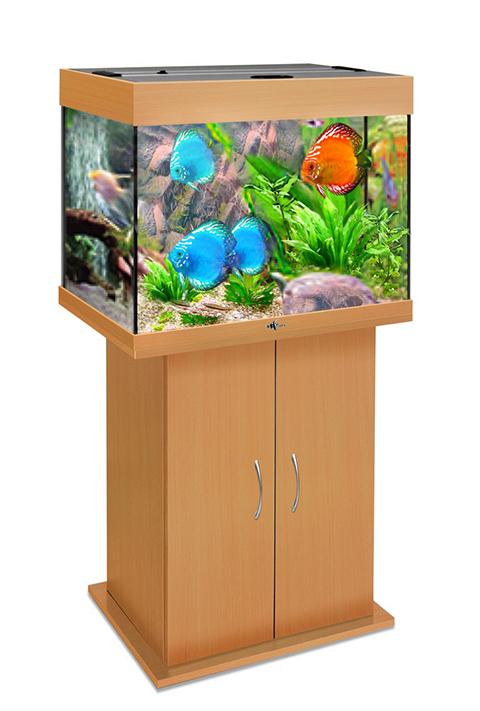 Аквариум и тумба Биодизайн Риф 100 бук (Аквариум) аквариум и тумба биодизайн риф 150 бук аквариум