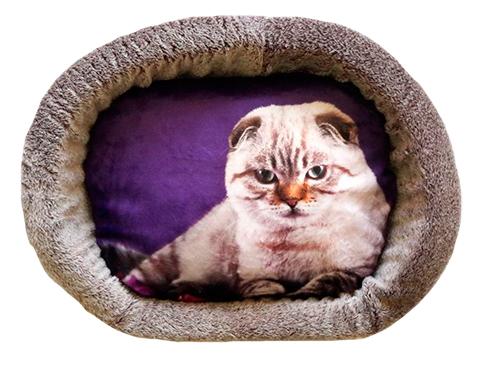 Лежак для кошек PerseiLine Дизайн № 5 принт 4 овальный 55 х 47 х 16 см (1 шт) фото