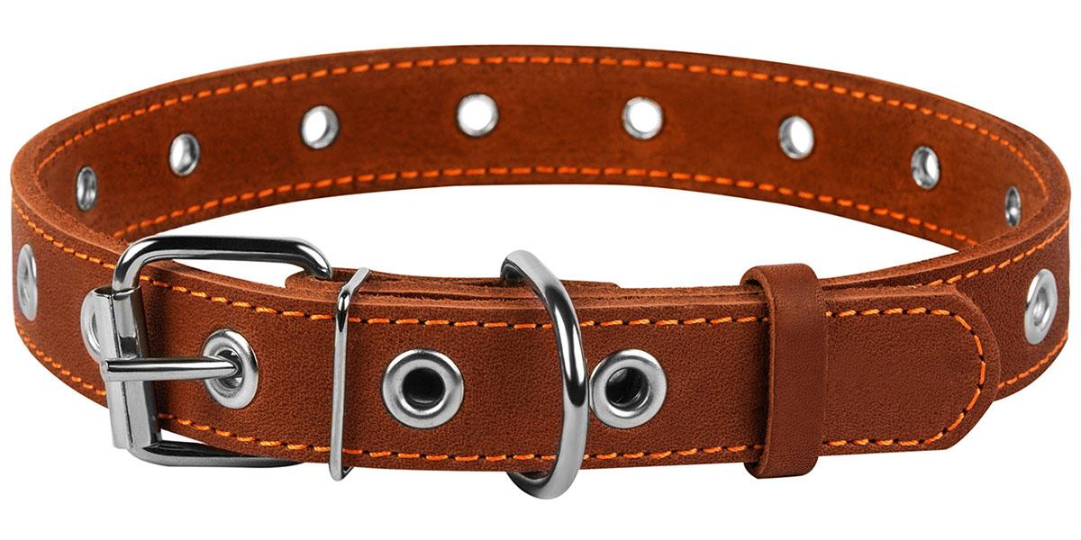 Ошейник кожаный для собак безразмерный коричневый 25 мм 60 см Collar (1 шт)