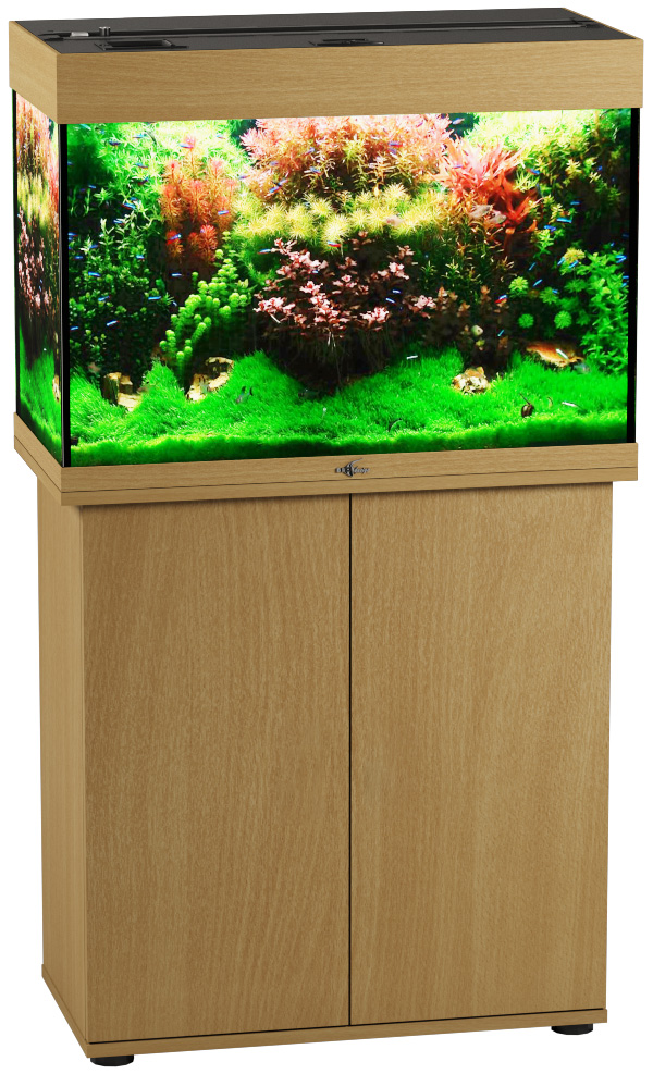Аквариум и тумба Биодизайн Риф 110 бук (Аквариум) аквариум и тумба биодизайн риф 150 бук аквариум