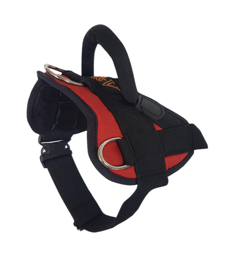 Шлейка нейлоновая стандартная с пластмассовым фастексом H-003 L красная (1 шт)