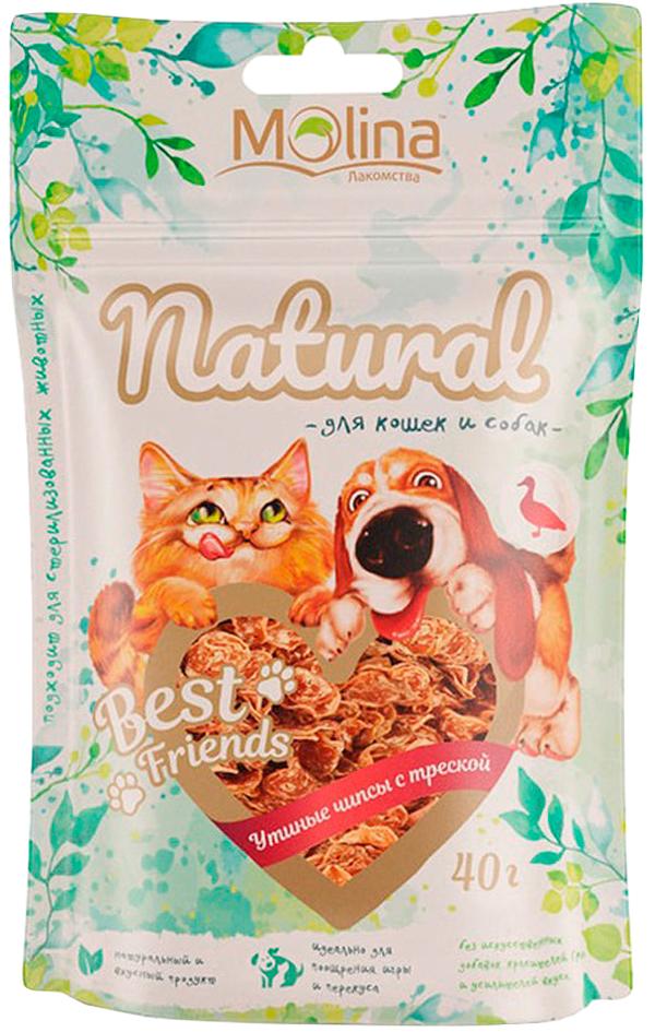 Лакомство Molina Natural Best Friends для собак и кошек чипсы утиные с треской 40 гр (1 шт)