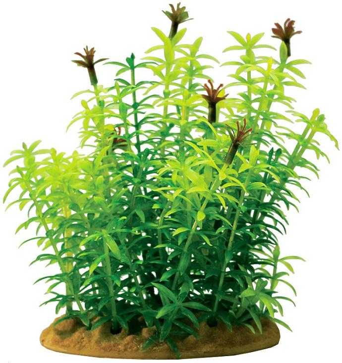 Растение для аквариума пластиковое Гигрофила Prime Pr-ys-60101 15 см (1 шт) 0 pr на 100