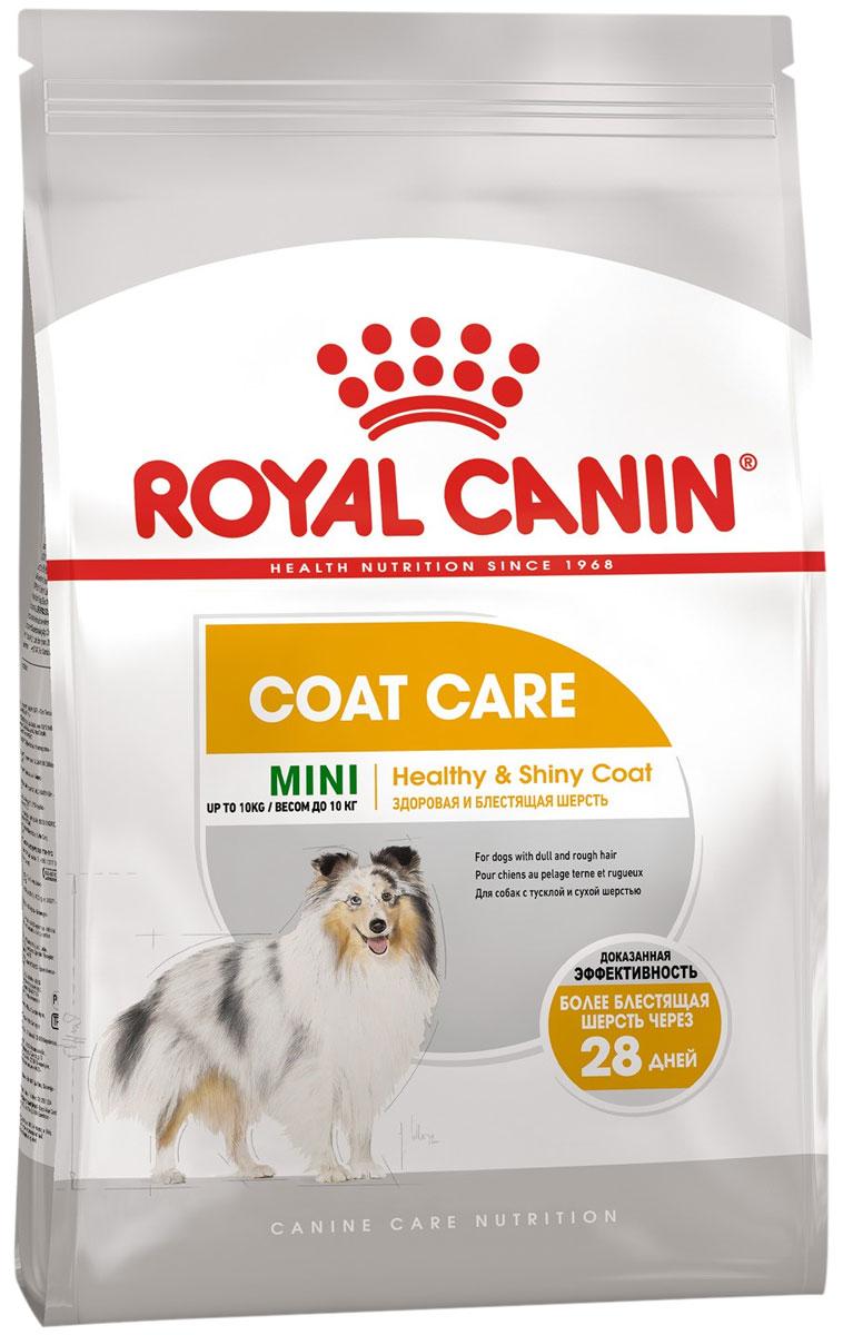 Royal Canin Mini Coat Care для взрослых собак маленьких пород с чувствительной кожей и шерстью (1 кг)