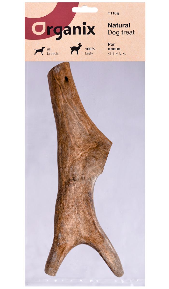 Лакомство Organix для взрослых собак всех пород рог оленя L (1 шт)