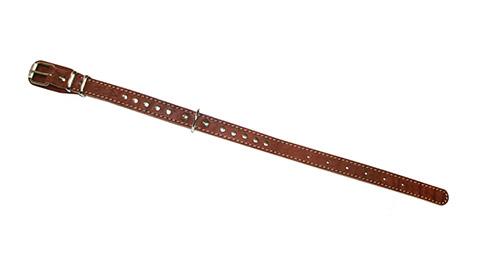 Ошейник для собак кожаный коньячный 32 - 44 см x 20 мм Аркон (1 шт)