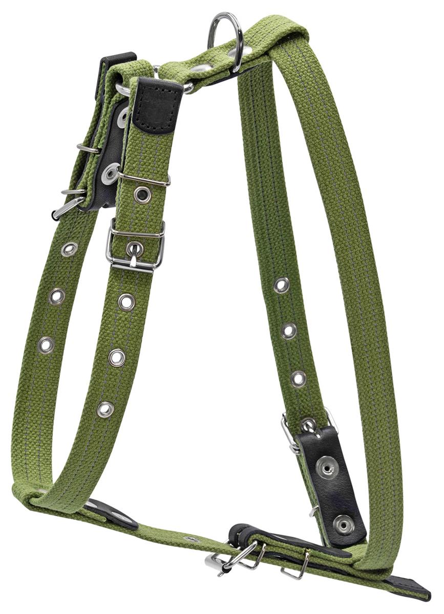 Шлея брезентовая № 3 для собак крупных пород 35 мм Collar (1 шт) фото