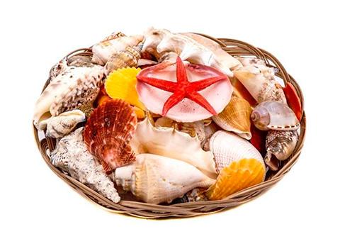 Декор набор морских раковин в корзине 15 см (1 шт).