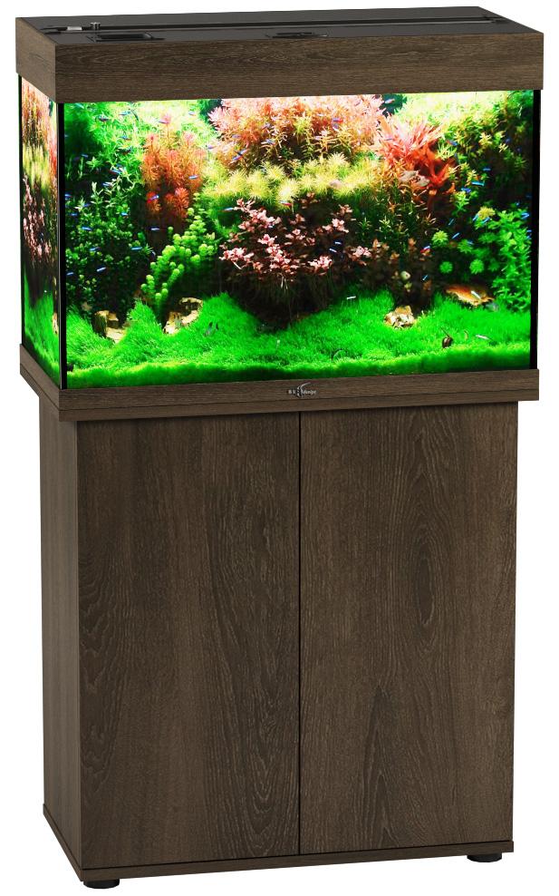 Аквариум и тумба Биодизайн Риф 110 золотой орех (Аквариум) аквариум и тумба биодизайн риф 150 бук аквариум
