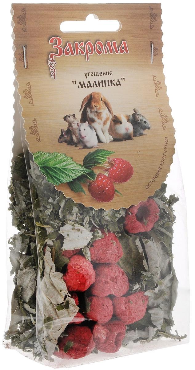 Закрома Малинка лакомство угощение для грызунов 15 гр (1 шт).