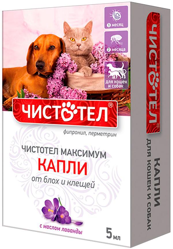 чистотел максимум капли для собак и кошек против блох и клещей универсальные (1 пипетка по 5 мл) (1 пипетка)
