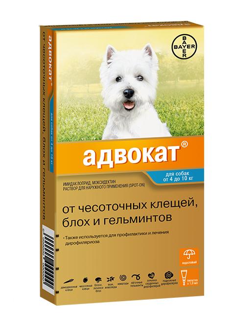 Advocate 100 – Адвокат капли для собак весом от 4 до 10 кг против клещей, блох, вшей, власоедов и кишечных круглых червей 1 пипетка по 1 мл Bayer (1 пипетка)
