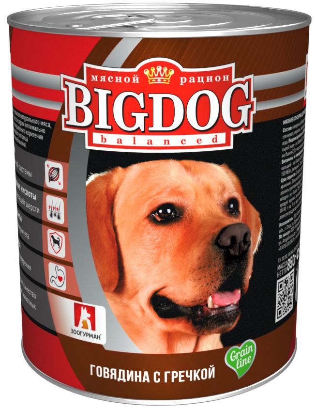 зоогурман Big Dog для взрослых собак с говядиной и гречкой 850 гр (850 гр)