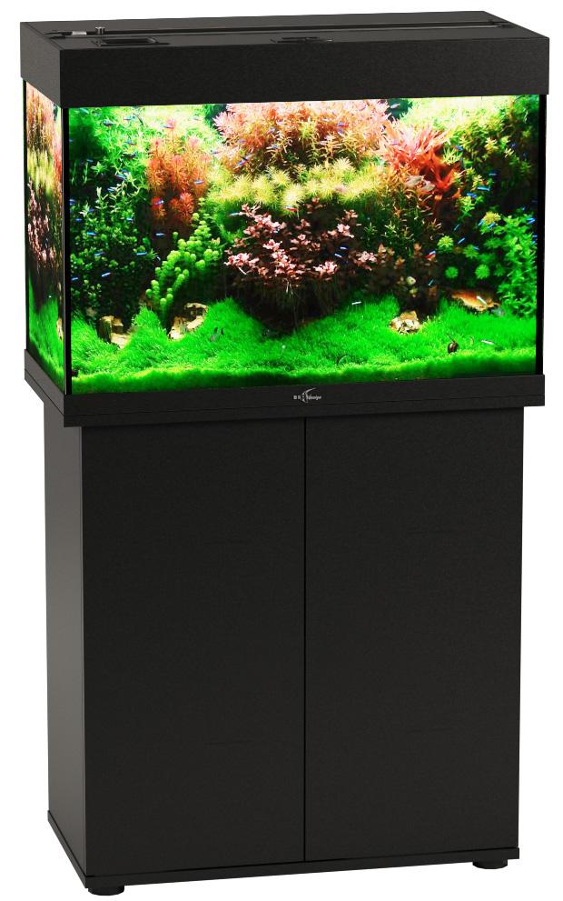 Аквариум и тумба Биодизайн Риф 110 черный (Аквариум) фото