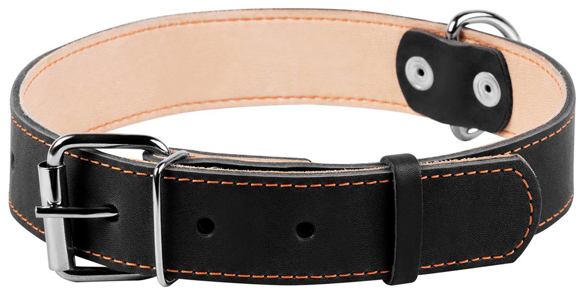 Ошейник кожаный для собак двойной черный 35 мм 48 – 63 см Collar (1 шт)