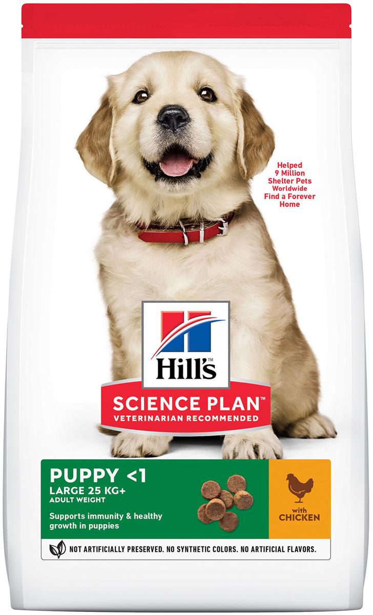 Hill's Science Plan Puppy Large Breed Chicken для щенков крупных пород с курицей (12 кг)