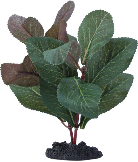 Растение для аквариума шелковое Гигрофила Prime Pr-81005 (13 см) 0 pr на 100