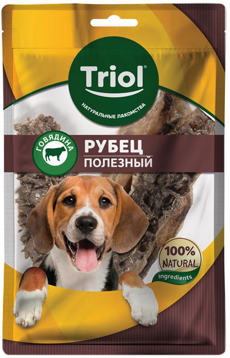 Лакомство Triol для собак рубец говяжий полезный 30 гр (1 шт)